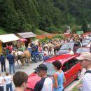 Haflingerji mad množico v Solčavi