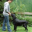 9.7.2009 / RonRaj Common Sense (GAJA), 15 months
