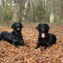 Pia & Rona in autumn colours