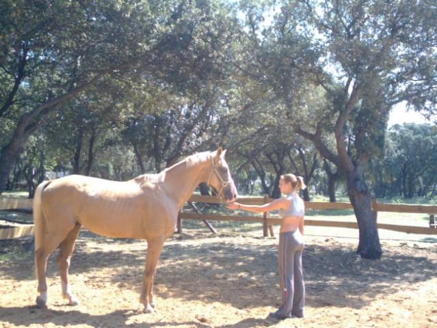 Bi kdo jahal konja?