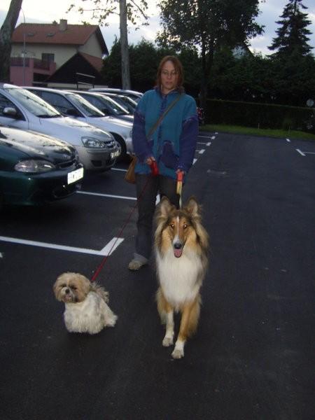 Jasper&Jay&Toby - foto