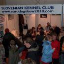razstavni prostor slovenske kinološke zveze