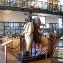 Oceanografski muzej, Monte Carlo