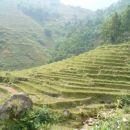 Po takih pokrajinah sma pa hodla. To so terase kjer gojijo riz.