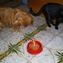 Mikin 11. rojstni dan