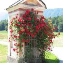 Kapelica na kateri se bohotijo vrtnice