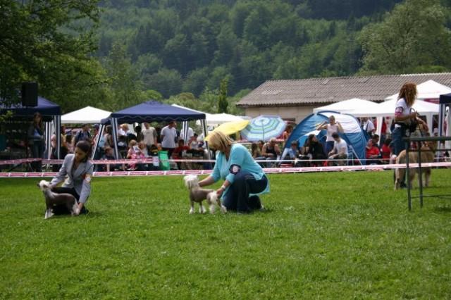 Hrušica 28.05.2006 - foto