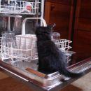 ...pomagam pri pomivanju posode...