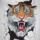 tiger- majca, nejc smodiš