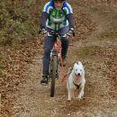 Smlednik, nedelja - kolesarji